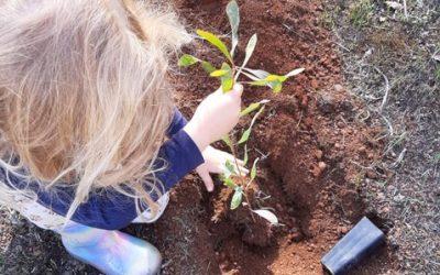 City of Cockburn community planting days in June 2021